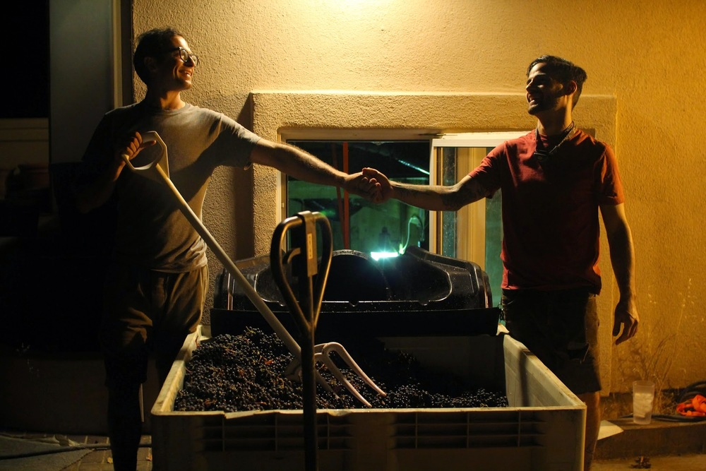 24: Shaunt and Sam from The Living Wines Collective