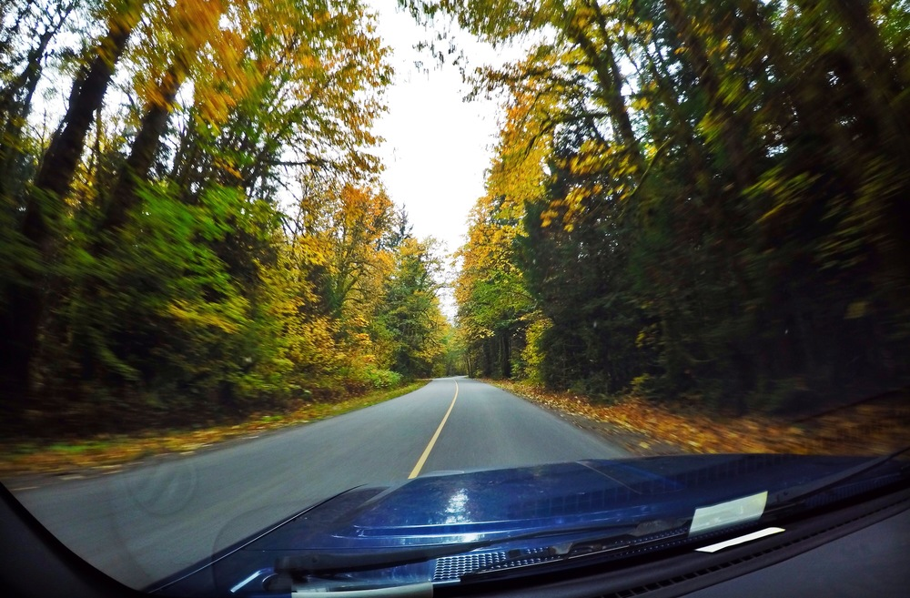 The drive out to the drop-off zone was so gorgeous. It's officially fall now and I love it!!