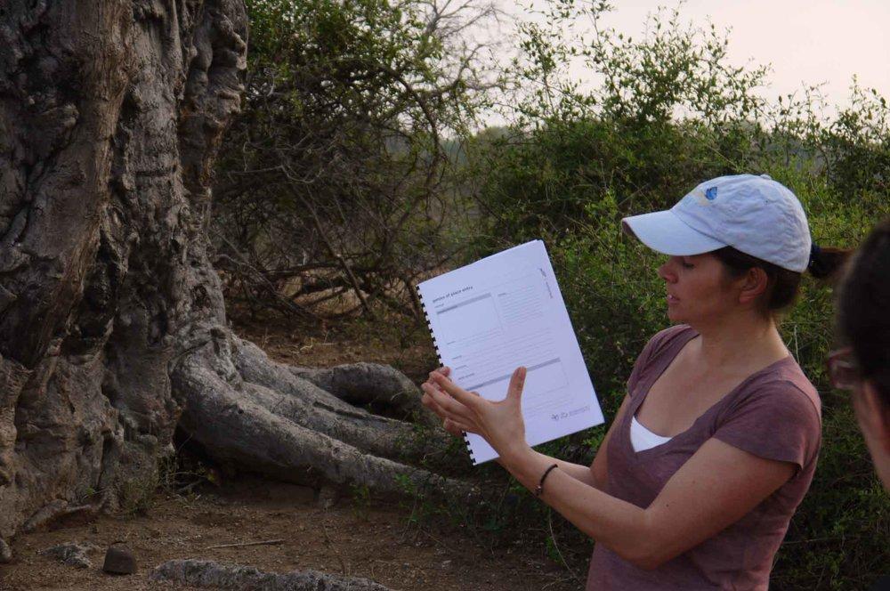 Claire baobab.jpg