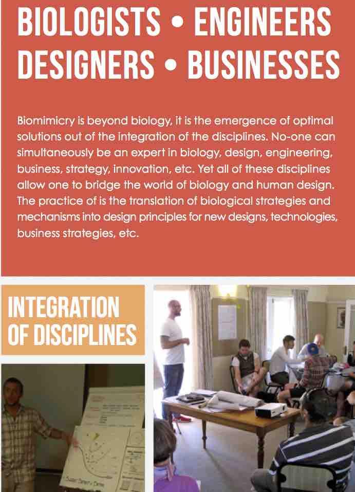 Disciplines.jpg