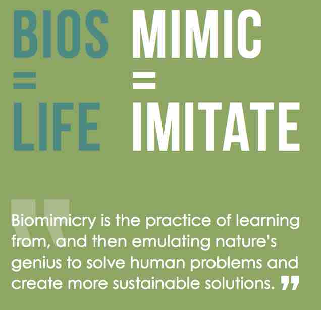 BiosM.jpg
