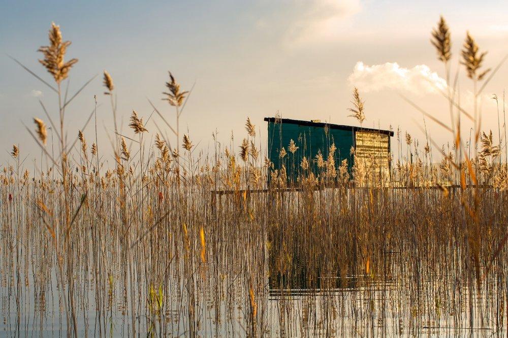 Cabane de chasseur au bord du lac de Sanguinet-L2