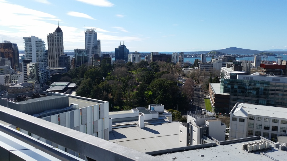Views from the Wakefield Street Observation Deck