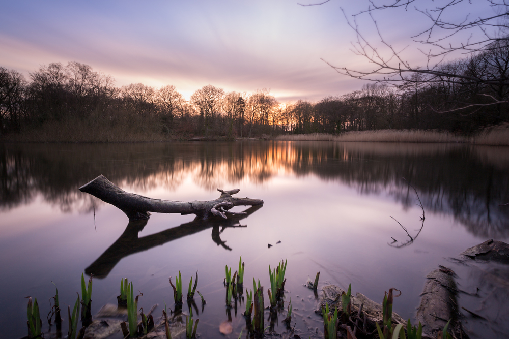 Woodhall Lake, Pudsey. Sunset long exposure landscape