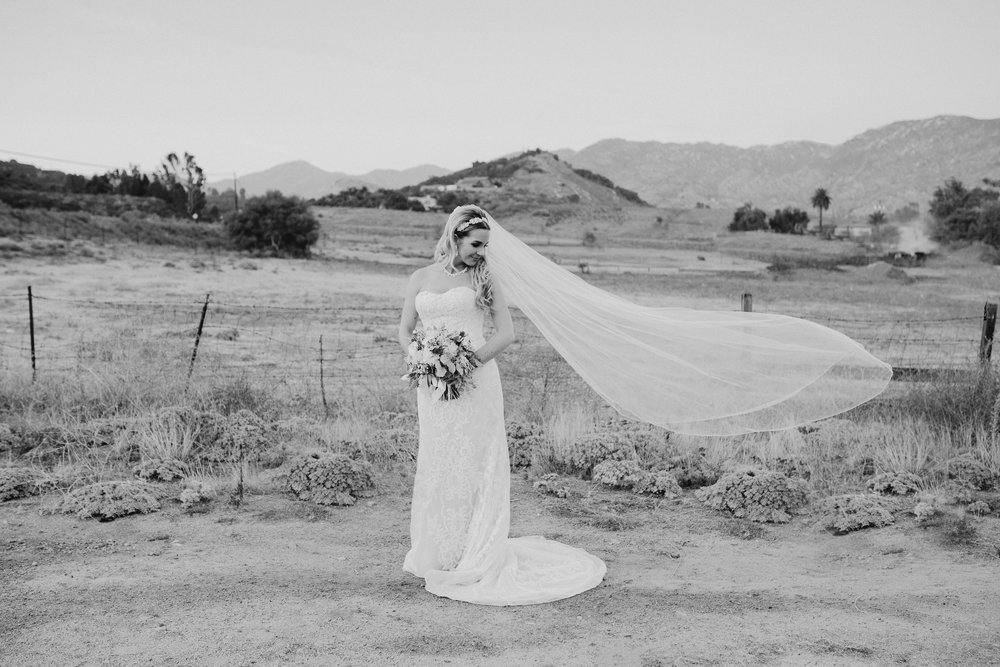 DianaLakePhoto-L+M-San-Diego-Wedding-Mr&Mrs133.jpg