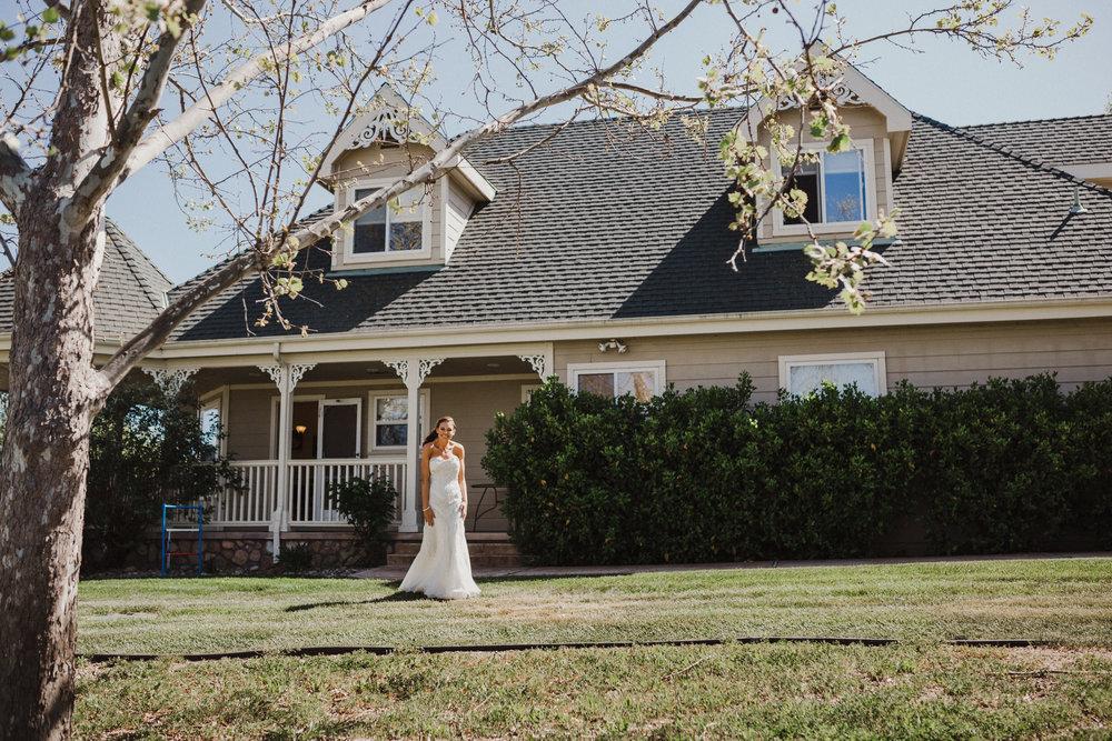 C+J-Grace-Maralyn-Estate-Wedding-Diana-Lake-Photography440.jpg
