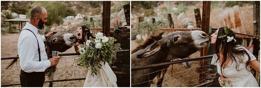 Zorthian-Ranch-Wedding-M+B-Diana-Lake-Photography-896.jpg