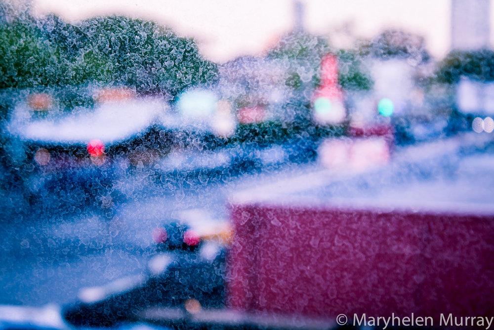 MaryhelenMurray_IMG_1993.jpg