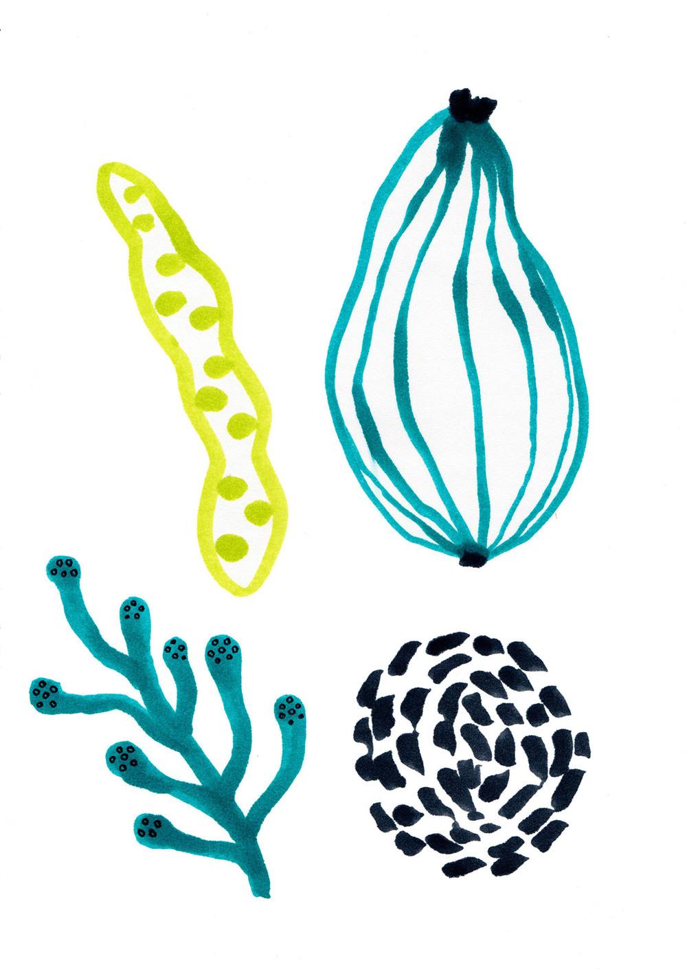 Plate design - vegetables