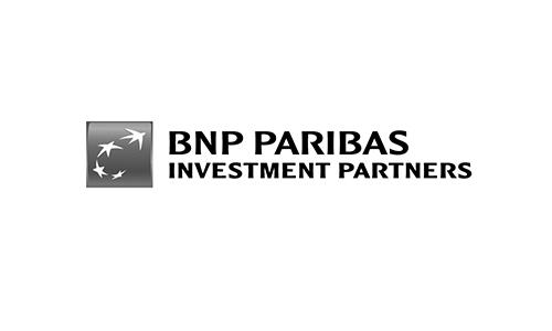 BNP IP Logo.jpg