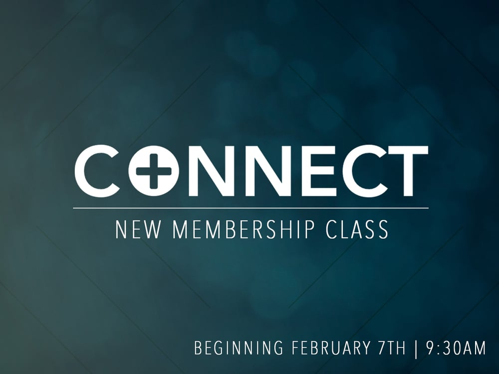 Connect - Feb 7, 2016 - NEWSLETTER.jpg