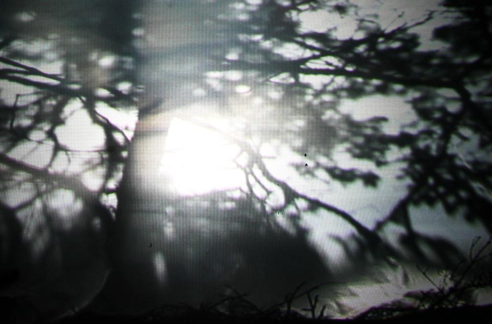 Screen Shot 2015-11-10 at 8.06.36 PM.png