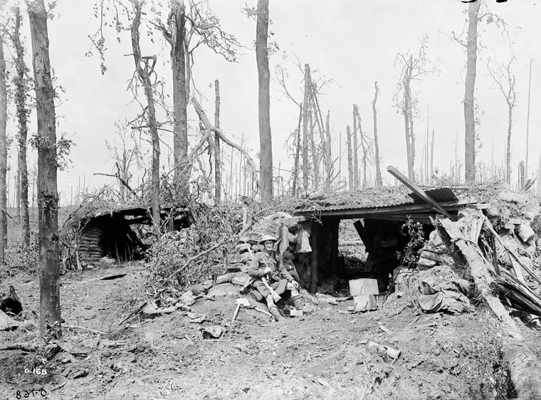 Forward Gun positions in Sanctuary Wood