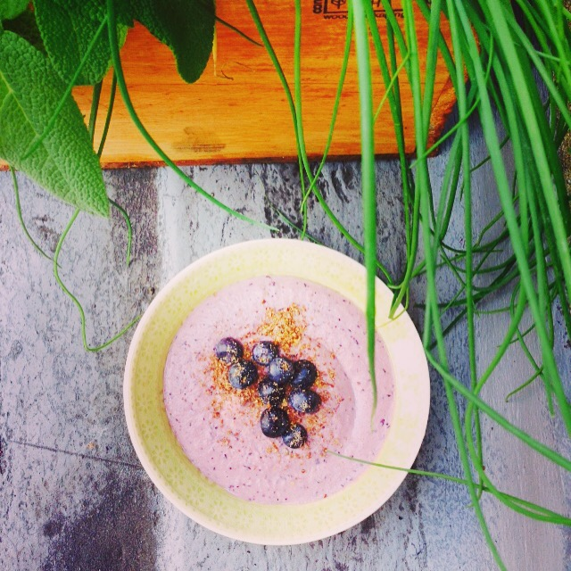 Blueberry & Lemon Breakfast Hummus