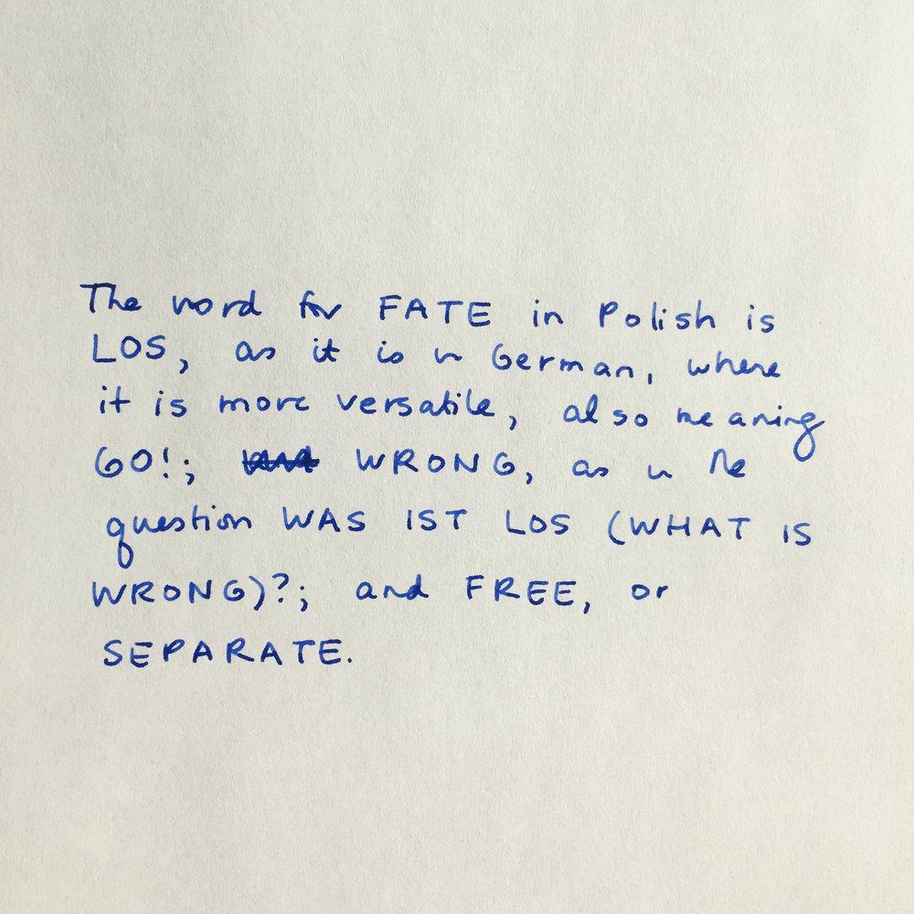 fate 1.jpg