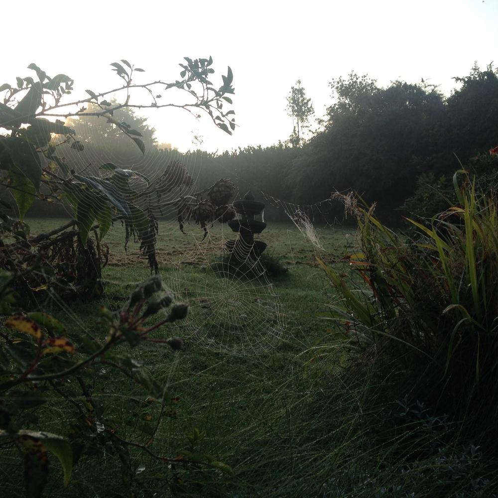 A new day dawns in Bodden