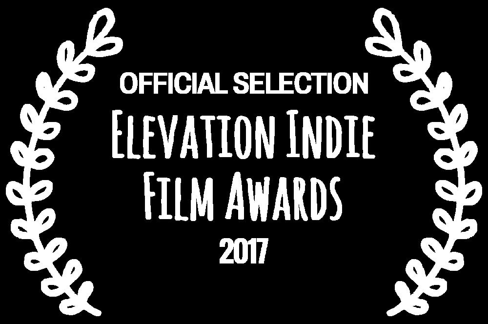 Elevation Indie Film Awards - 2017.png