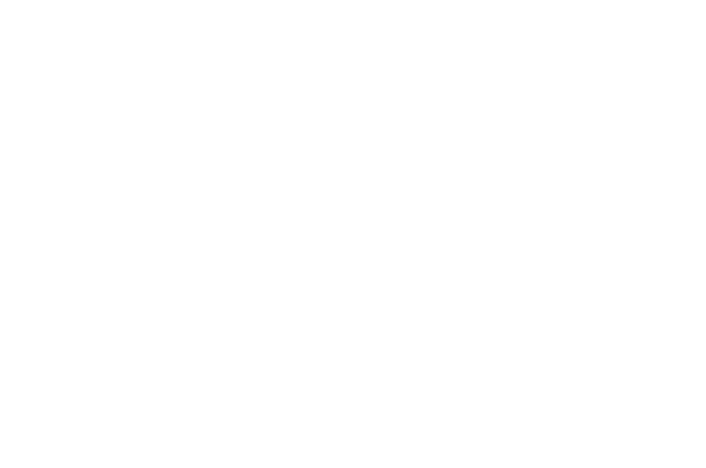 AUSTIN-INDIE-FEST-White-2017.png