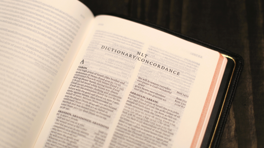 118-page dictionary/concordance