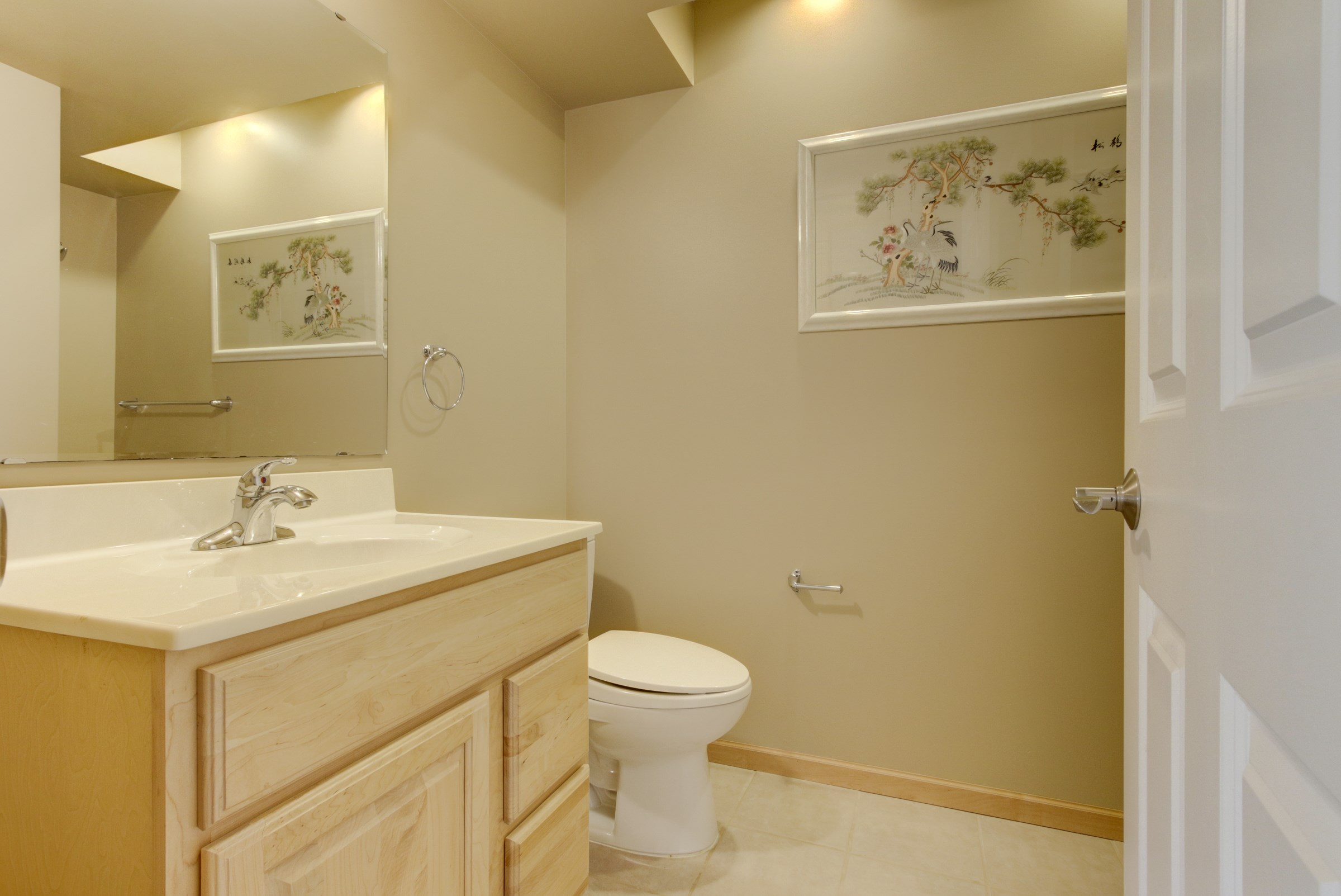 027_Lower Level Bathroom.jpg