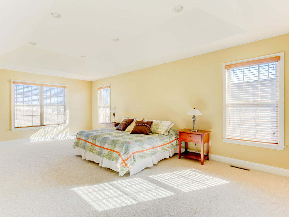 12625 85th Pl N Maple Grove MN-large-019-18-Master Suite-1334x1000-72dpi.jpg