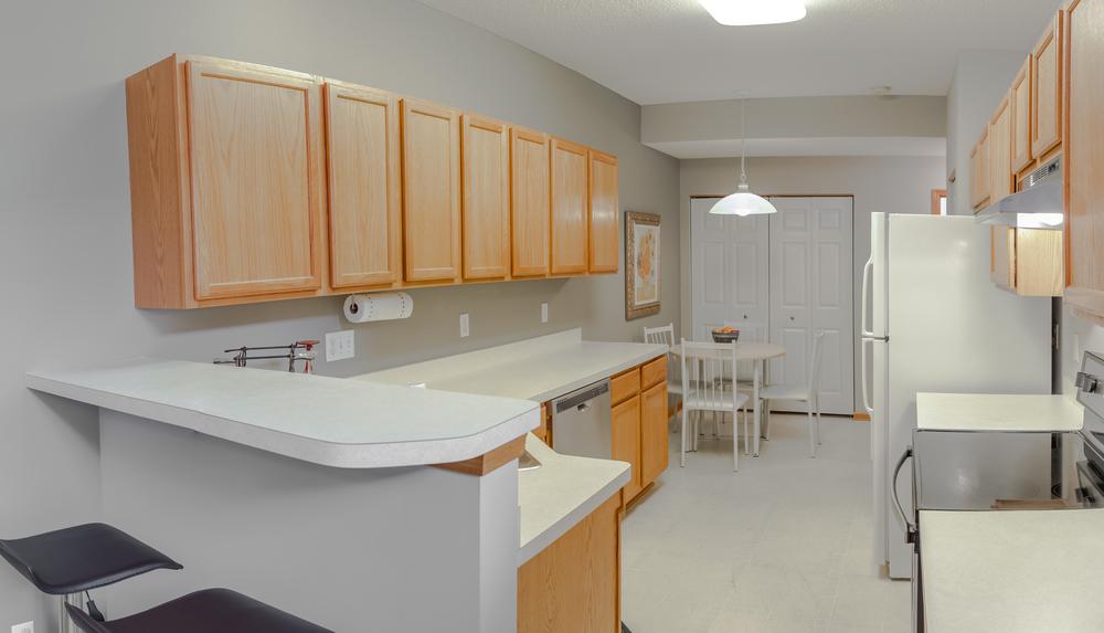 Shakopee kitchen -1.jpg