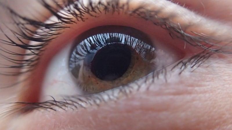 Thick Eyelashes