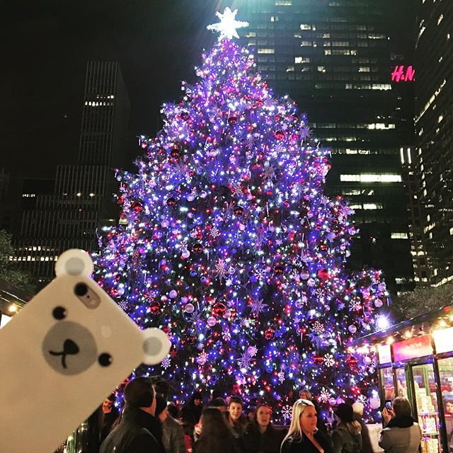 Countdown for Christmas begins ! 🎄🎄🎄 #anicase #december #shop #iphonecase #holidayshopping #giftsforchristmas #nyc #bryantparktree