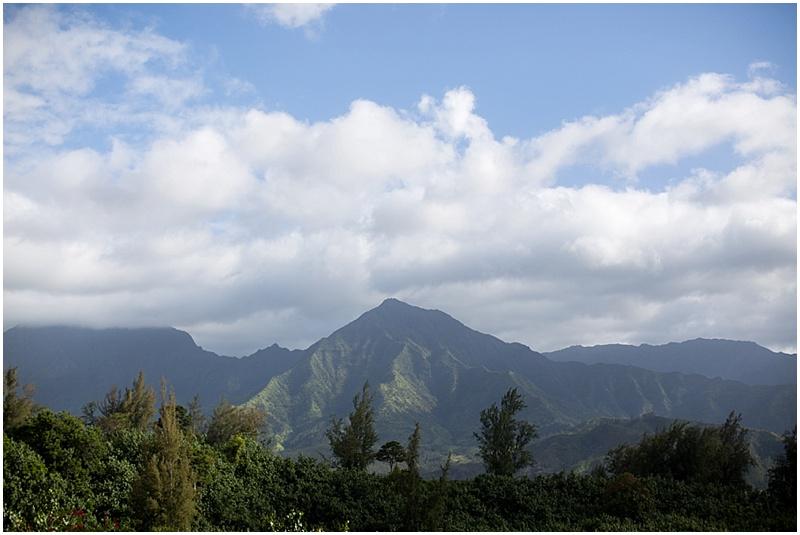 Kauai private estates_0002.jpg