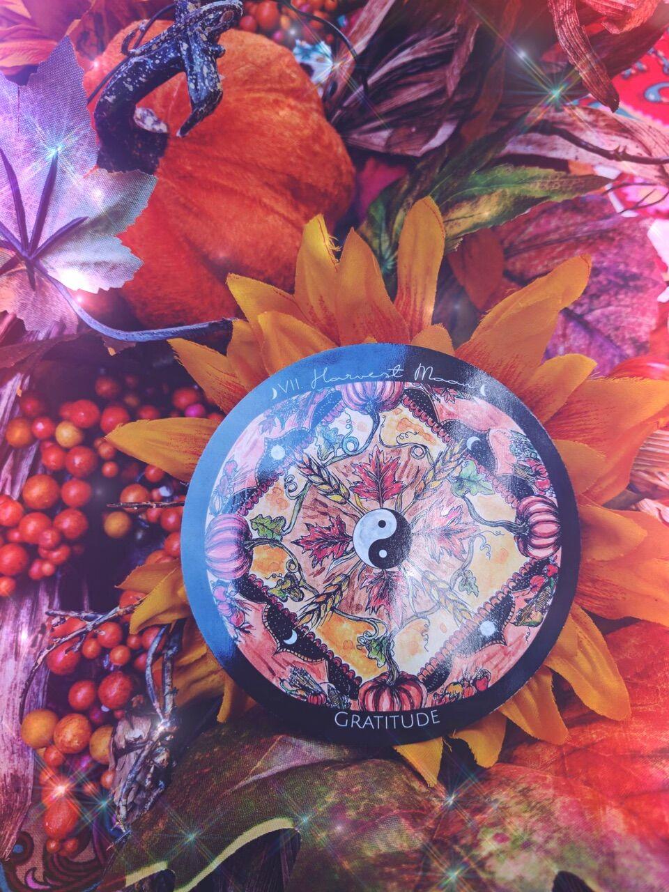 gratitude harvest.jpg