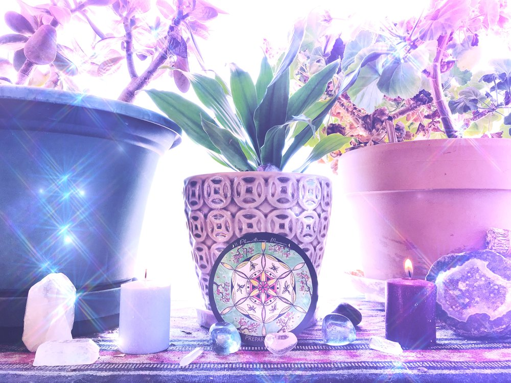 Spirit de la Lune | Intention Planting Moon Ceremony