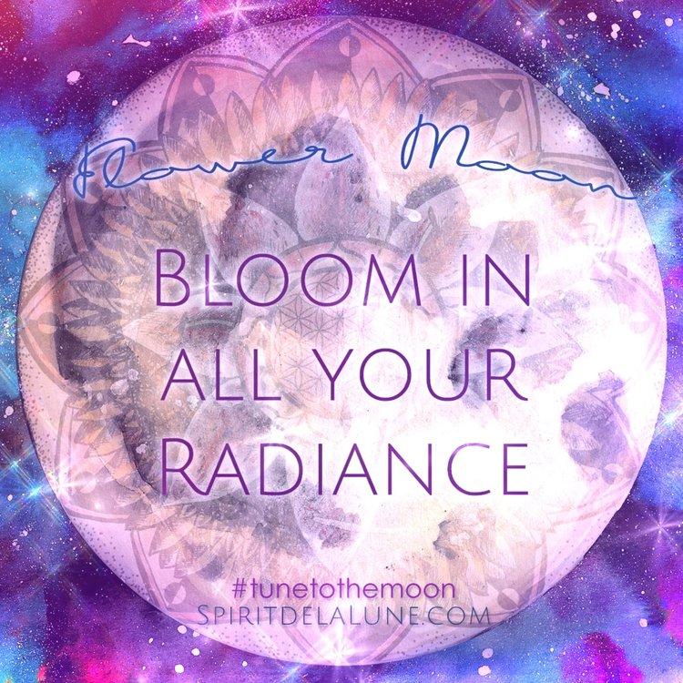 Full+Flower+moon.jpeg