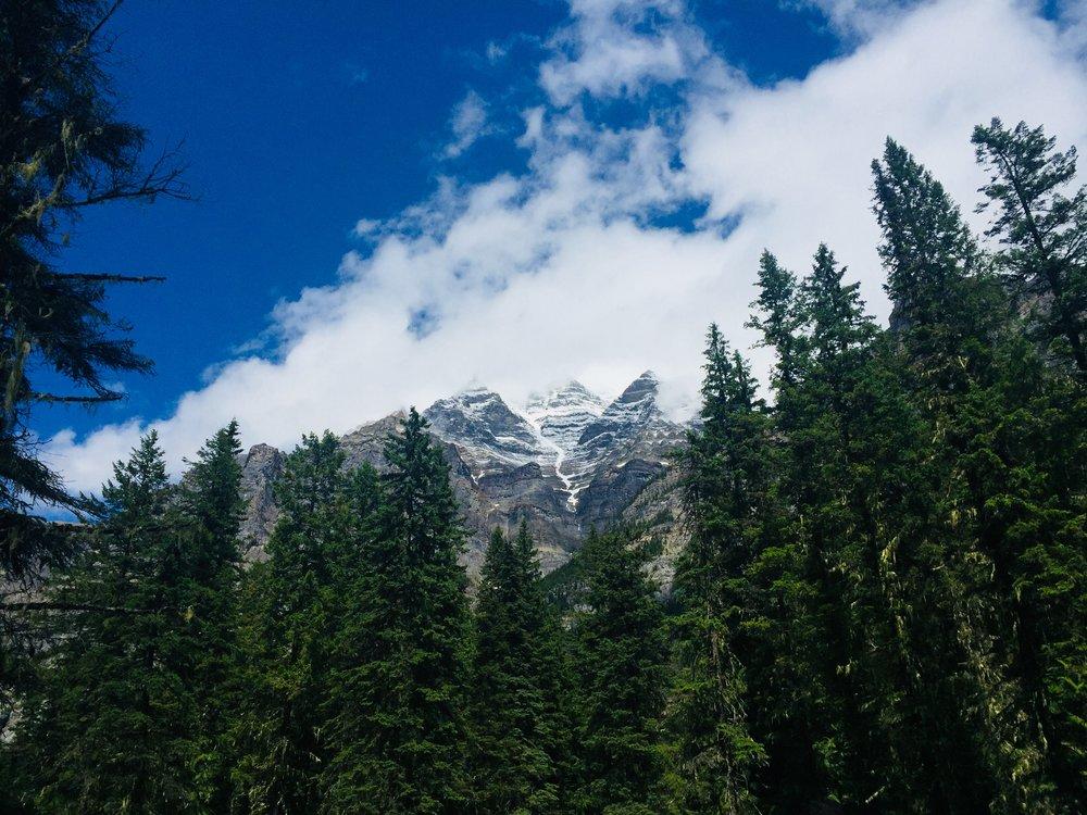 A peek at the peak of Mt. Robson
