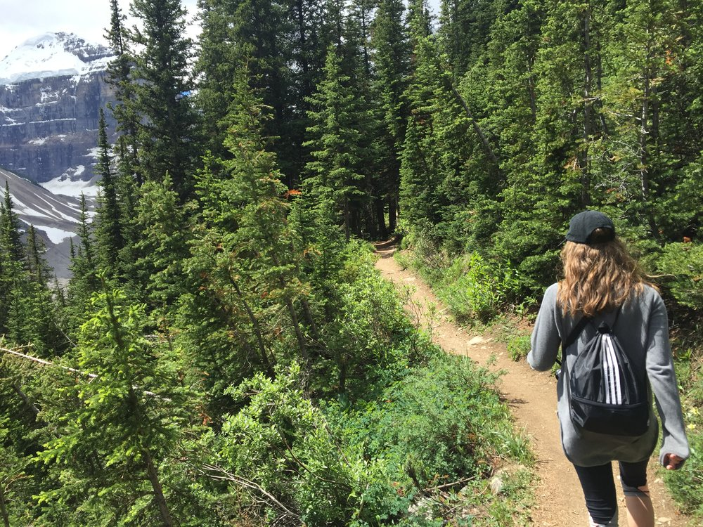 Trail from Beehive Lookout to Plain of Six Glaciers