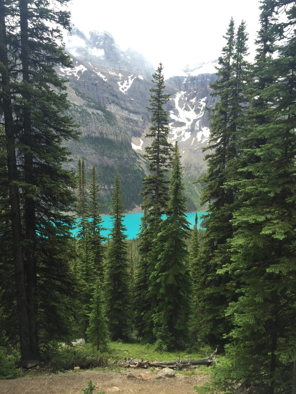 A peek at Moraine Lake from Larch Valley trail