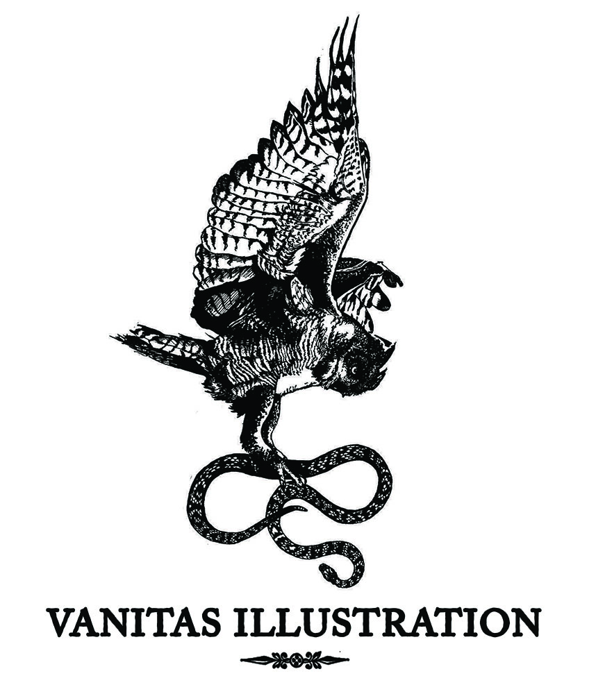 Vanitas Illustration
