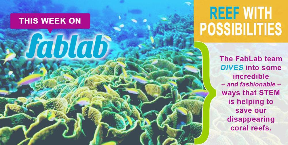 Coral-Reefs2.jpg