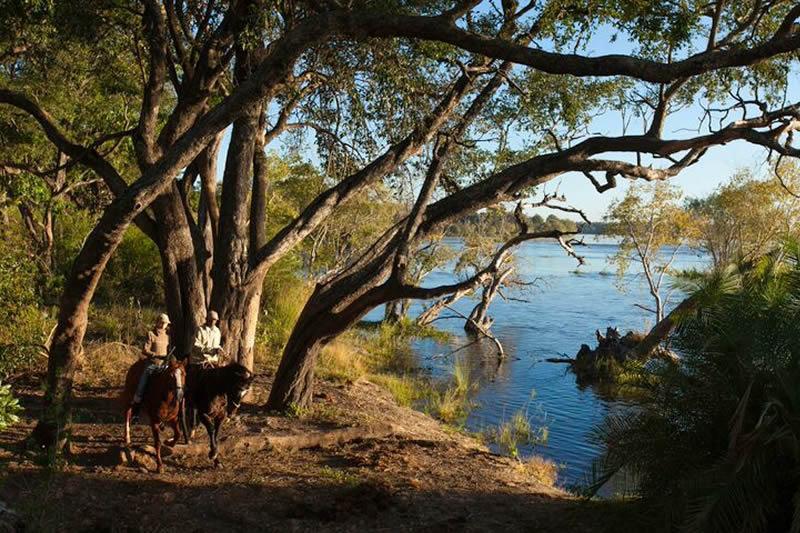 zambezi_horse_trails_14.jpeg