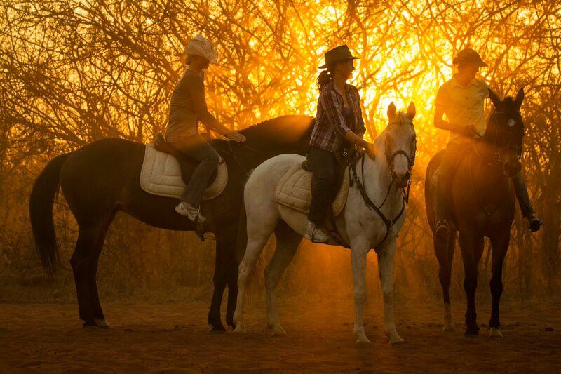 zambezi_horse_trails_21.jpeg