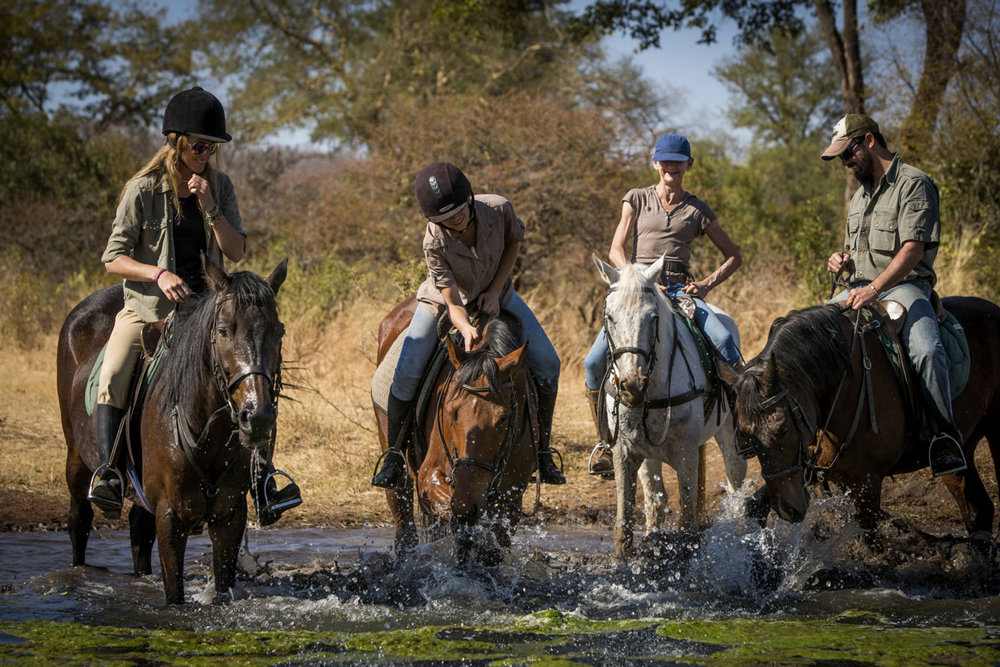 zambezi_horse_trails_22.jpg