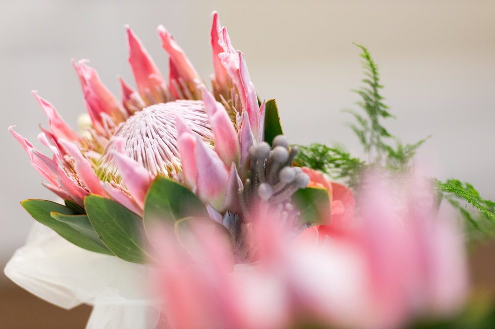 protea wedding flowers ideas.jpg