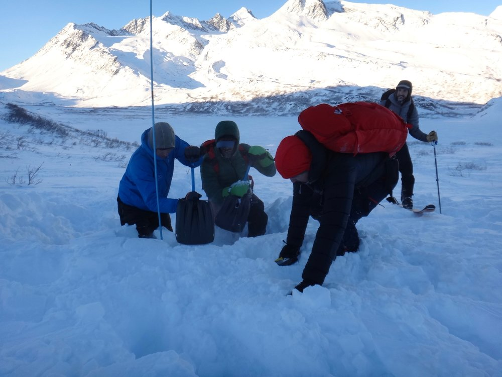 Students practice digging, searching and looking at snow during a training program. (Photo by S. Carter with the Alaska Avalanche Information Center