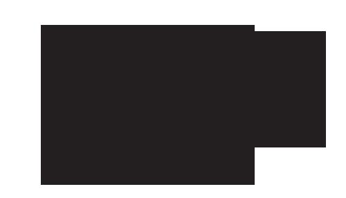 PALMER+CITY+ALEHOUSE+WLTGO.png