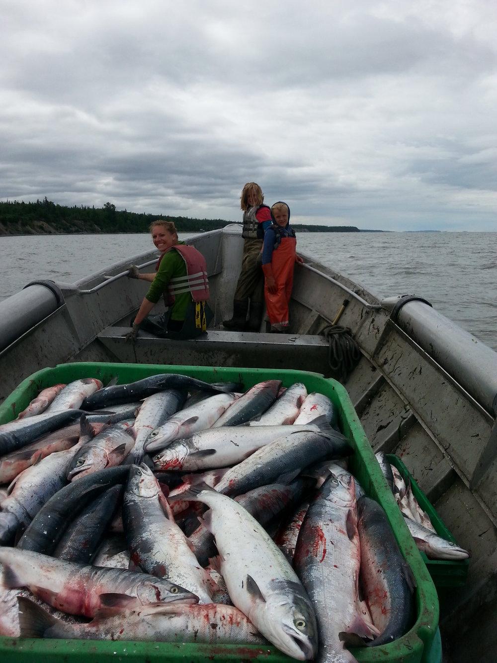 Rollman Family Salmon 8.jpg
