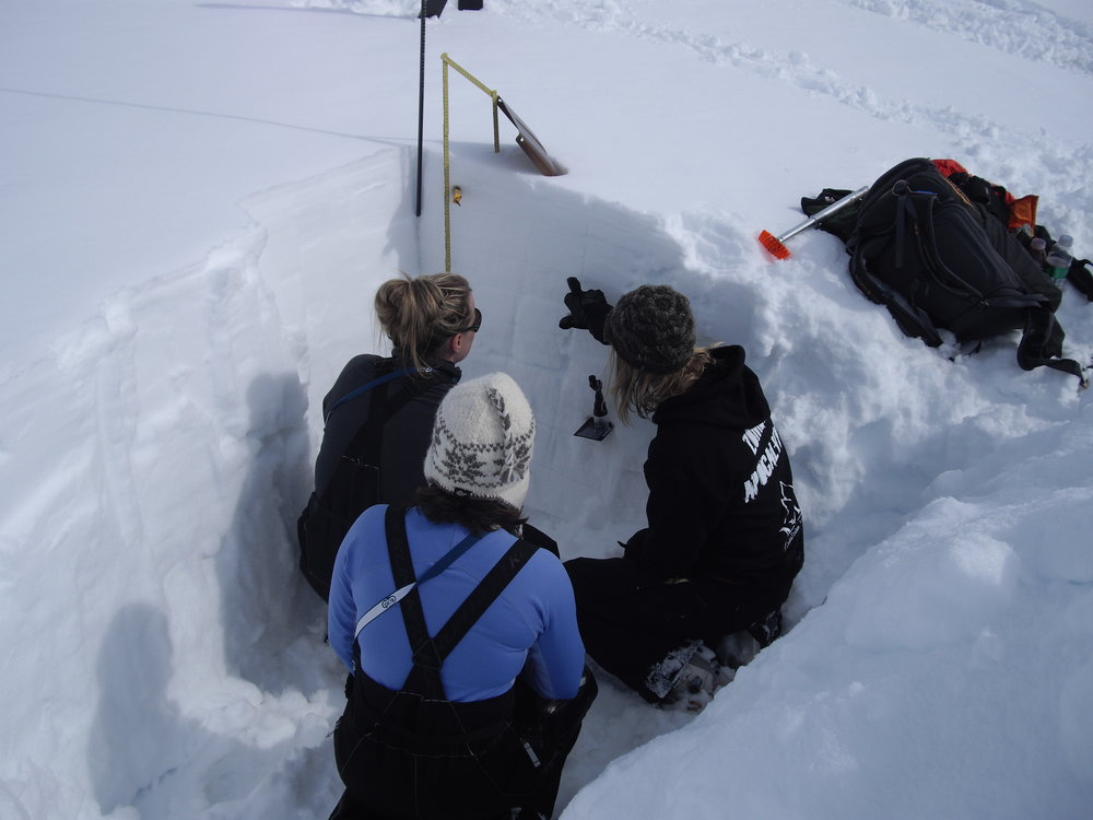 Sarah Carter shows students the layers of the snowpack. Photo by Debra McGhan.
