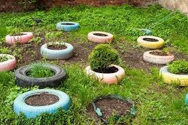 COMMUNITY - Is It Safe To Use Old Tires As Planters 1.jpg
