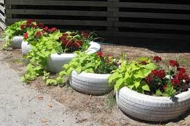 COMMUNITY - Is It Safe To Use Old Tires As Planters 2.jpg