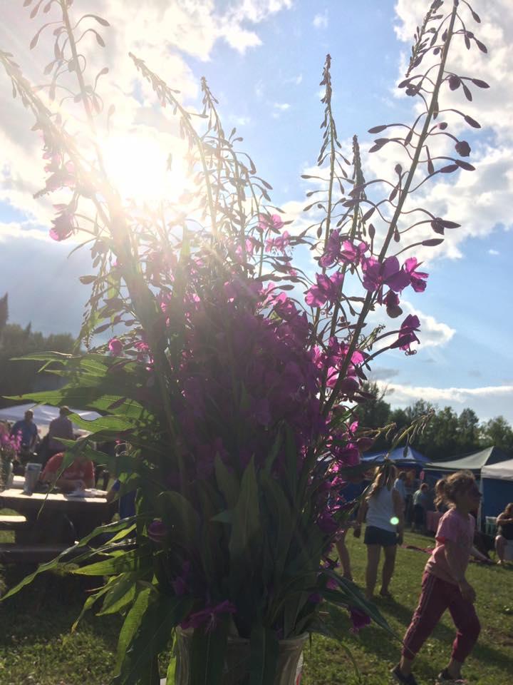 COMMUNITY - 13th Annual Fireweed Festival 2.jpg