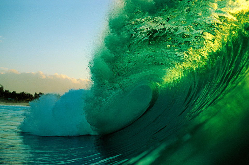A rare Green Wave in its natural habitat