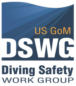 dswg logo1.png